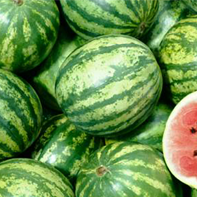 phto of watermelon