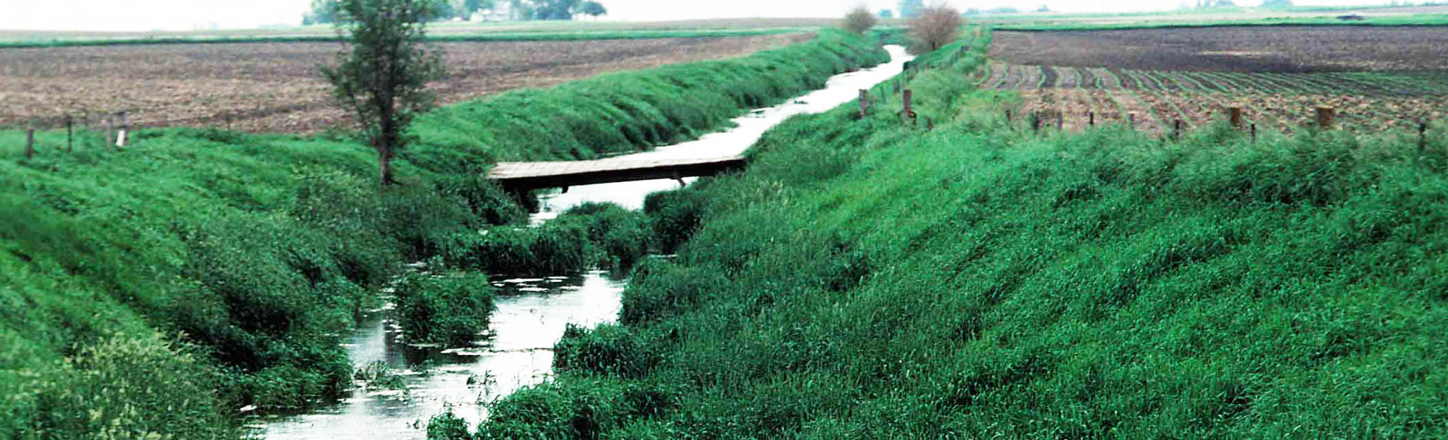 photo of drainage ditch