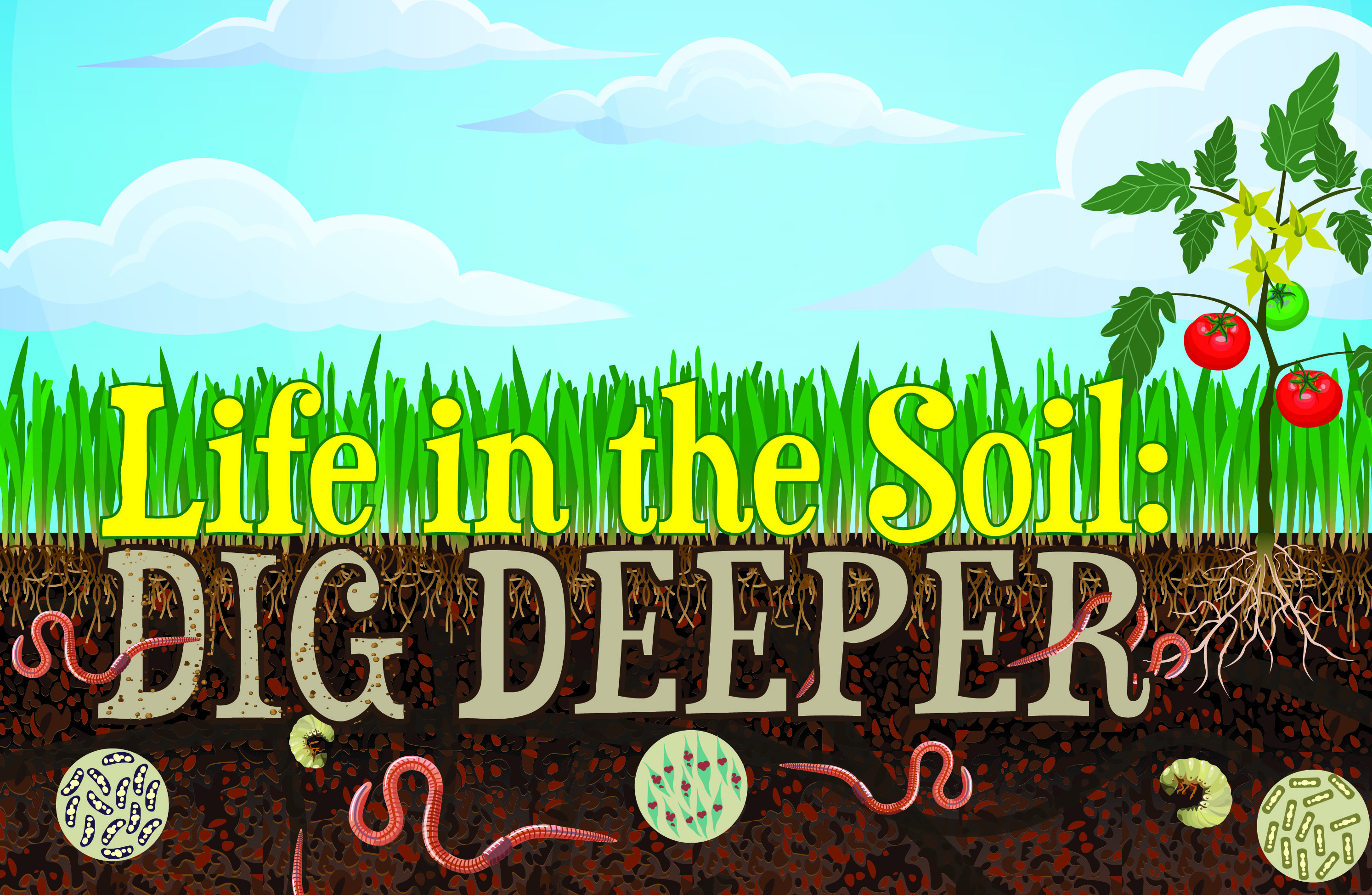 Soil and water conservation essay